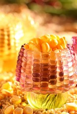 "LIULI Crystal Art Crystal ""Golden Abundance"" Corn Paperclip Holder Desk Decor in Clear Amber (Limited Edition)"