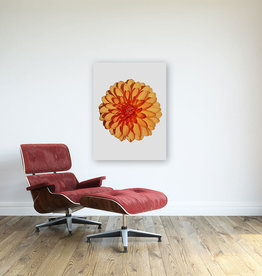 "Leo Lam ""Dahlia 2"" Limited Edition Canvas Print"