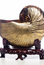 Lawrence & Scott Brass Nautilus Shell on Carved Wave Rosewood Stand