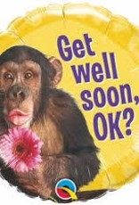 """Qualatex 18"""" Get Well Chimp With Flower"""