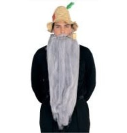 "Rubies Costumes 25"" LONG BEARD-GREY"