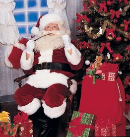 Rubies Costumes Crimson Imperial Plush Adult Santa Suit with Faux Fur Trim - Standard