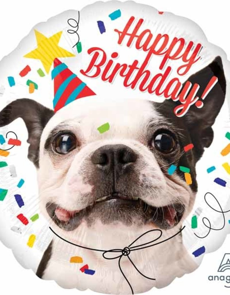 "Qualatex 18"" Happy Birthday Dog"