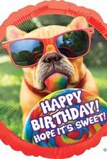"Qualatex 28"" Happy Birthday Dog"