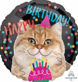 """Happy B-Day Cat 18"""""""