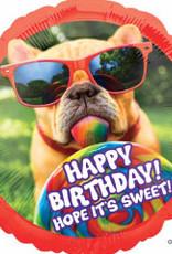 """28"""" Happy B-Day Dog"""