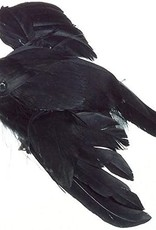 4.75 inch Flying Crow Feathered