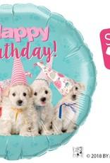 "18"" Birthday Puppies - Studio Pets"