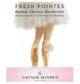 Gaynor Minden Fresh Pointes Bamboo Charcoal Deodorizers