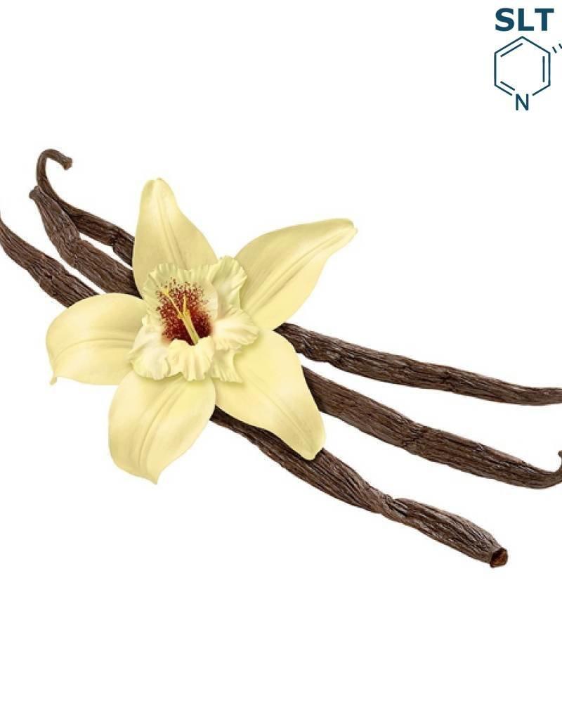 French Vanilla | 30ml | Salt