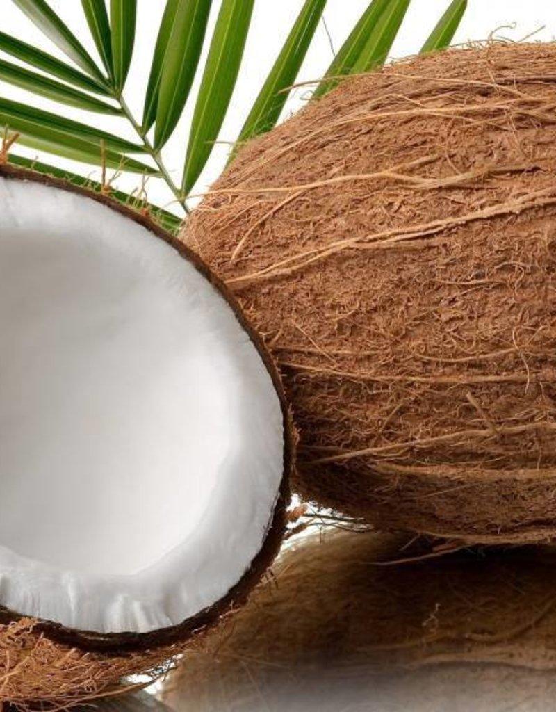 Coconut | 30ml | Salt