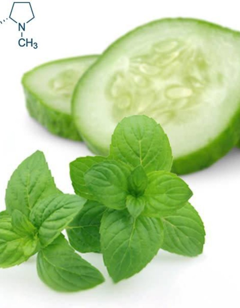 Cucumber Mint | 30ml | Salt