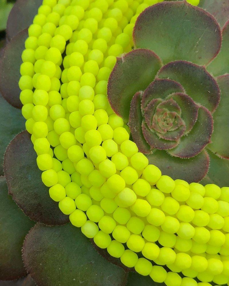 Firepolish 4mm : Neon Yellow