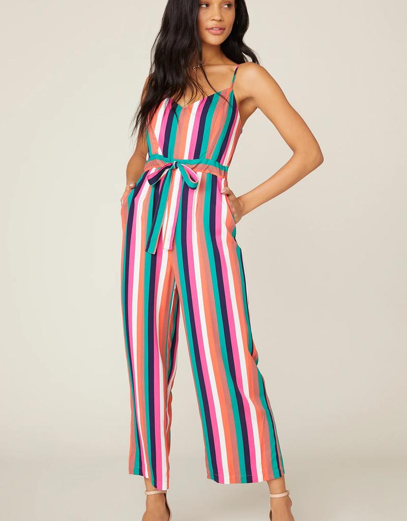 Flying Colors Multi Stripe Jumpsuit