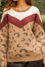Multi Chevron Leopard Sweater Red