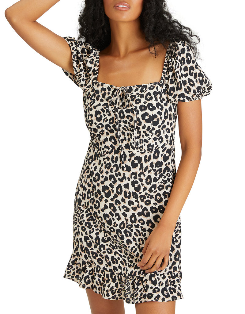 Fresh Breeze Dress Classy Cat
