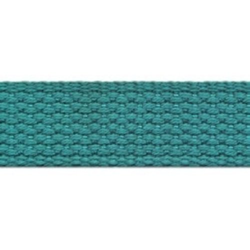 "Cheep Trims 1"" Webbing in Light Teal"