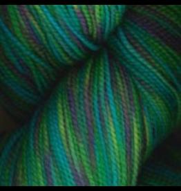 Plymouth Yarn Happy Feet 100 Yarn in Vivid Caribbean Mix