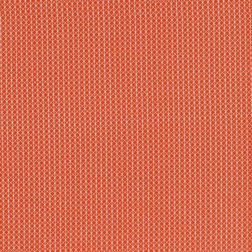 Cotton + Steel Netorious in Roadster (orange)