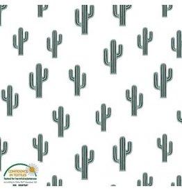 Cactus in White