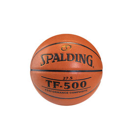 Spalding Spalding TF-500 Performance Composite youth basketball - 27.5""