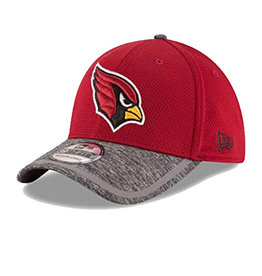 New Era Arizona Cardinals New Era 2016 NFL Training Camp 39THIRTY
