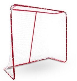 Champro Street Hockey Goal