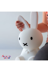 Cool Decor Company Miffy First Light