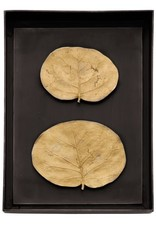 Michael Aram Botanical Leaf Shadow Box - Gold