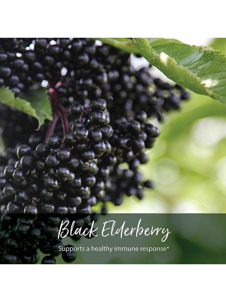 GAIA HERBS Gaia Kids Black Elderberry Syrup, 3oz.