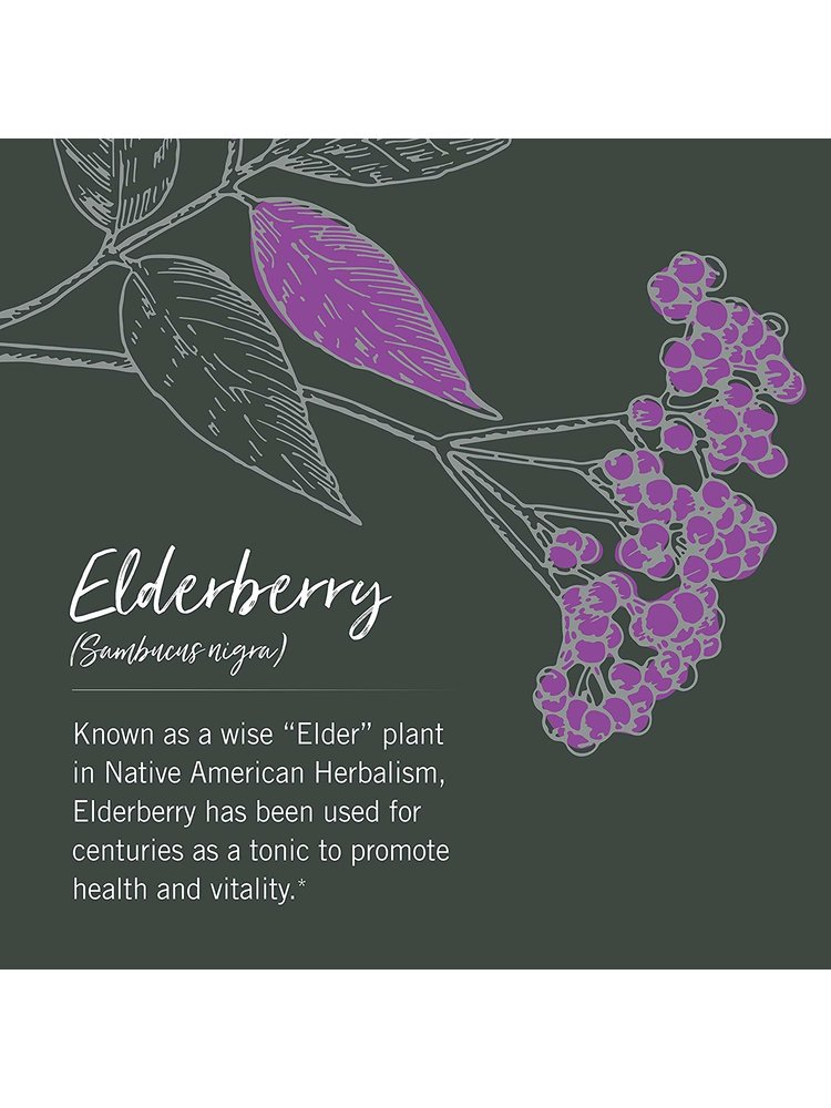 GAIA HERBS Gaia Black Elderberry, 60cp