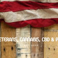 Veterans, Cannabis, CBD & PTSD