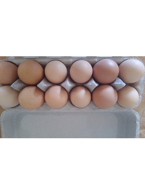 WAUKA MEADOWS FARM Wauka Farms Local Eggs, 1 Dozen