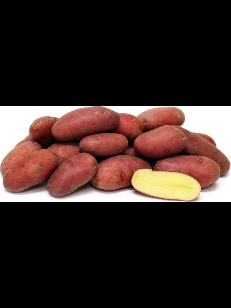 Fresh Point Organics Potato French Fingerling, Albert Bartlett, Organic, 1.5lb.