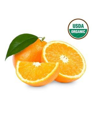 Fresh Point Organics Oranges, Organic - EACH