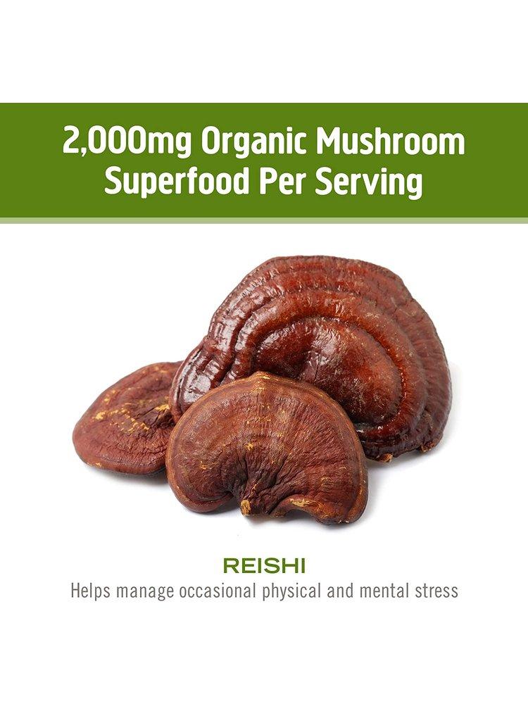 OM Mushroom Om Mushroom Reishi Mushroom Superfood Powder, 100g