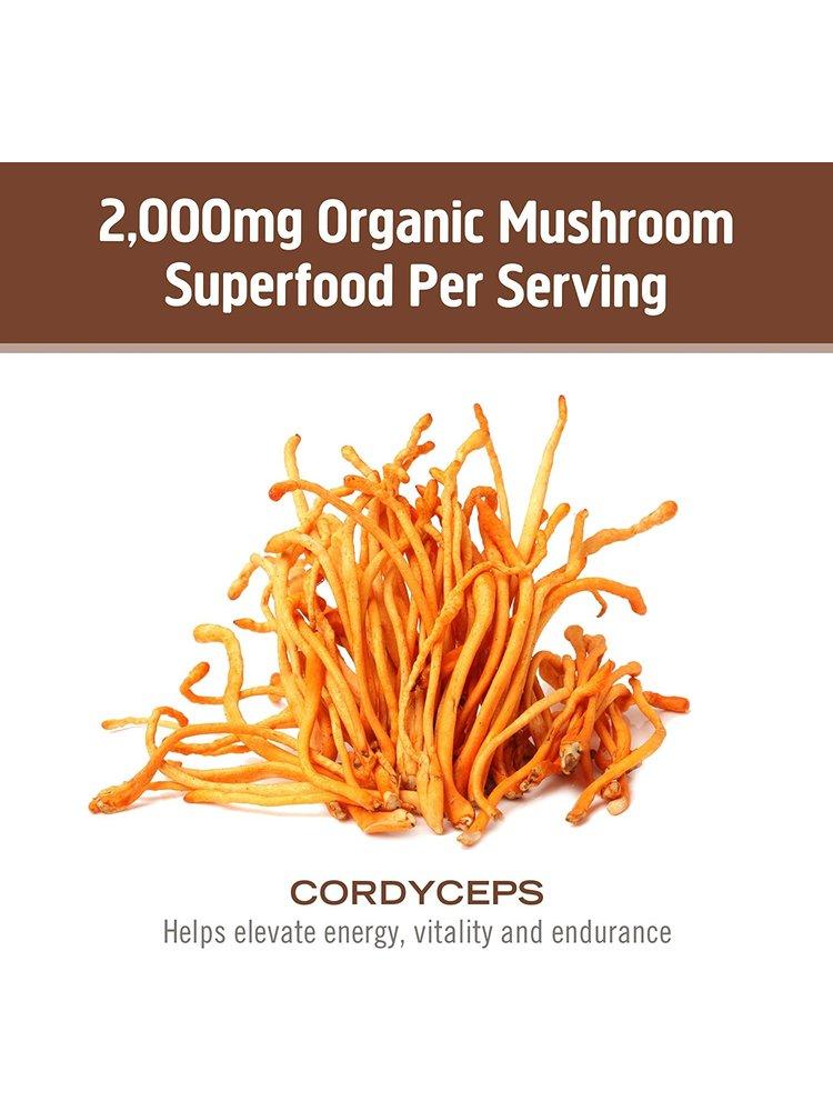 OM Mushroom Om Mushroom Cordyceps Mushroom Superfood Powder, 100g