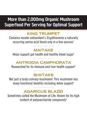 OM Mushroom Om Mushroom Daily Boost, Masterblend, 80cp