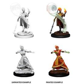 Wizkids D&D Nolzur's Minis: Wave 5: Fire Genasi Female Wizard