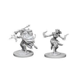 Wizkids D&D Nolzur's Minis: Tiefling Warlock Female