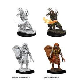 Wizkids D&D Nolzur's Minis: Human Druid Male
