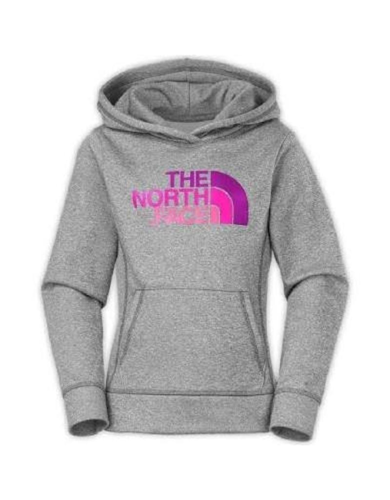 11639911ab1a North Face Surgent Pullover Hoodie - The Ski Shack