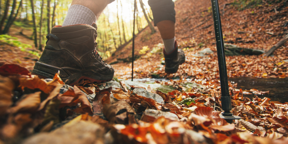 Fall Hiking: Top 6 Hiking Tips for Beginners