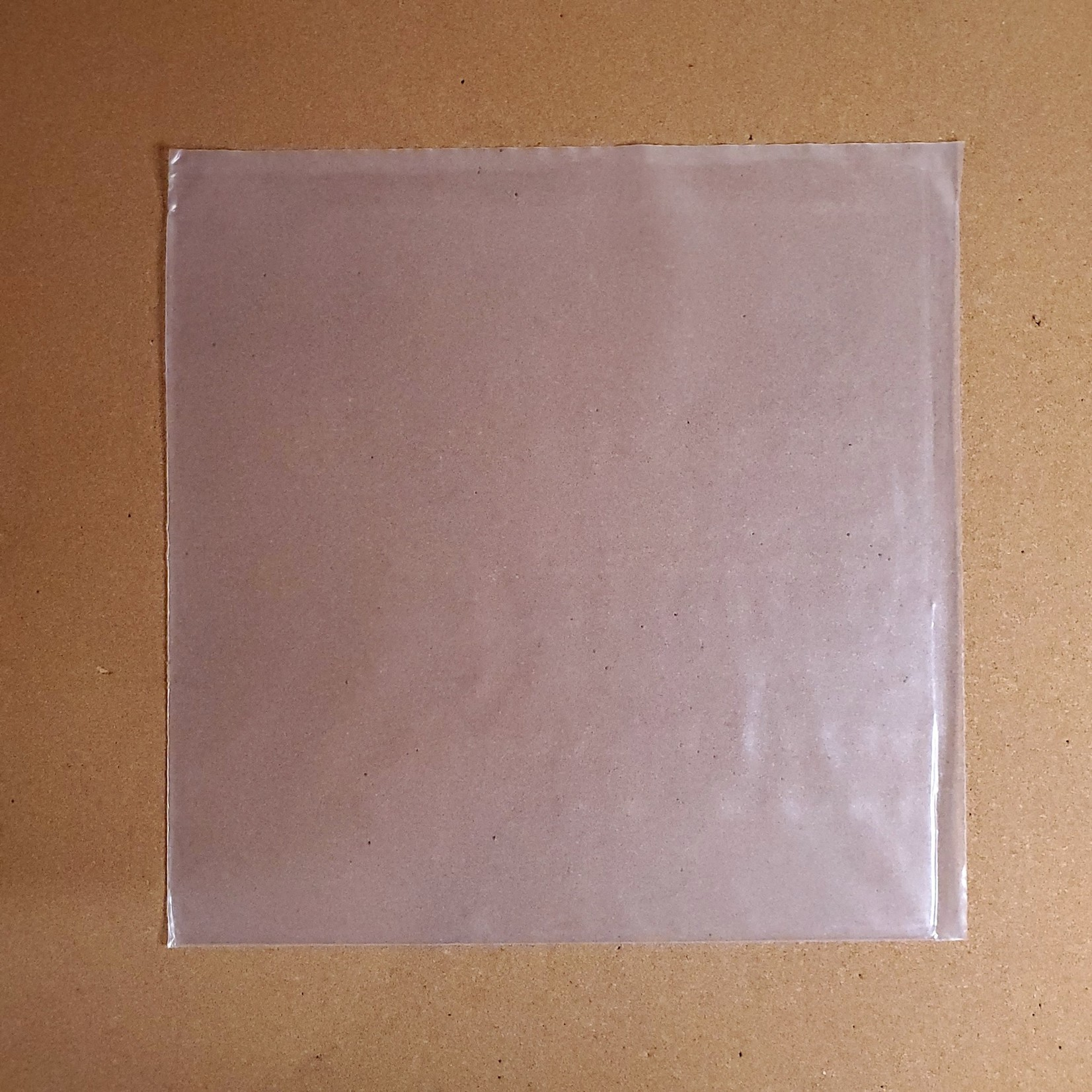 [Accessories] 12'': Plastic Outer Sleeve (single)