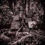 [New] Washington, Kamasi: Harmony of Difference EP