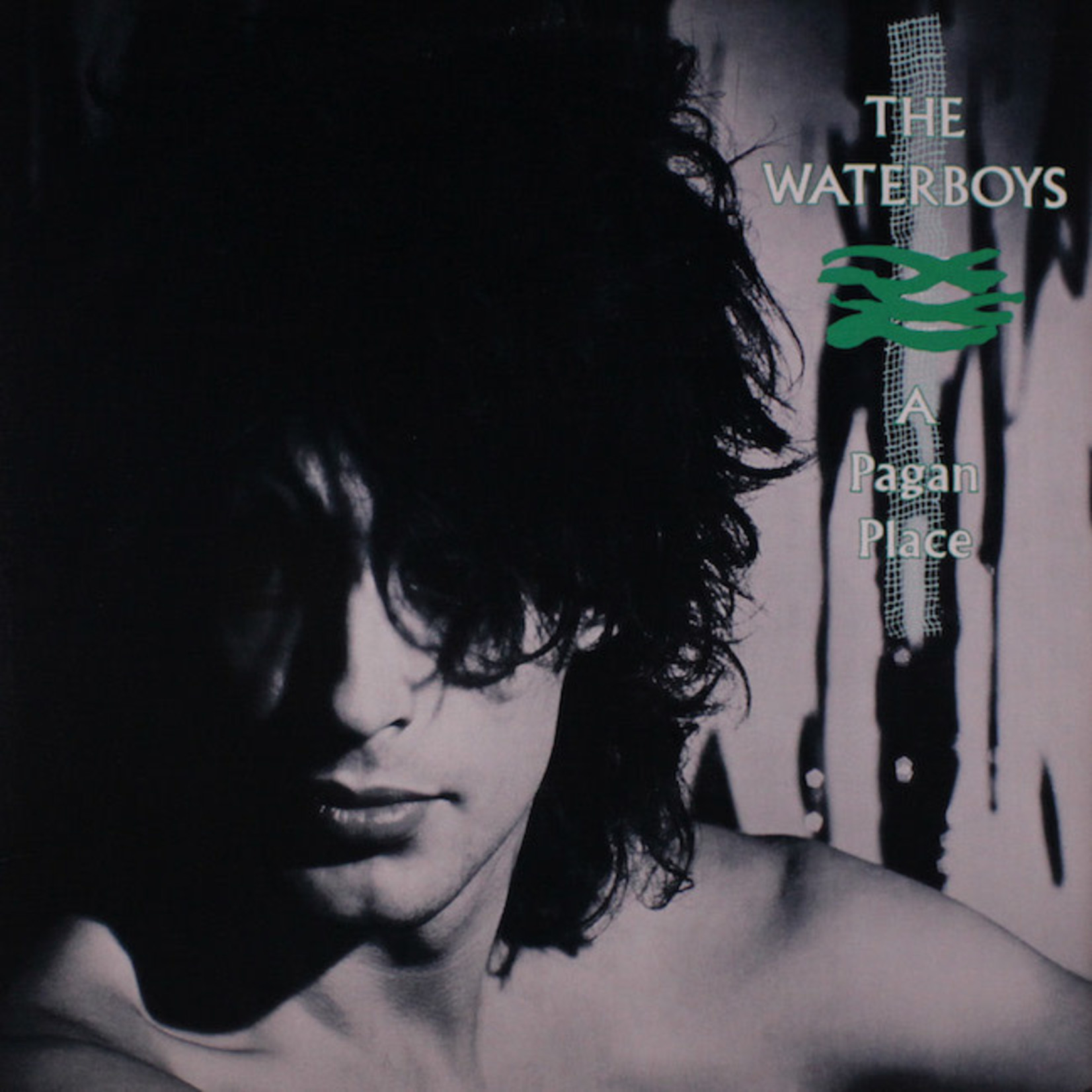 [Vintage] Waterboys: A Pagan Place