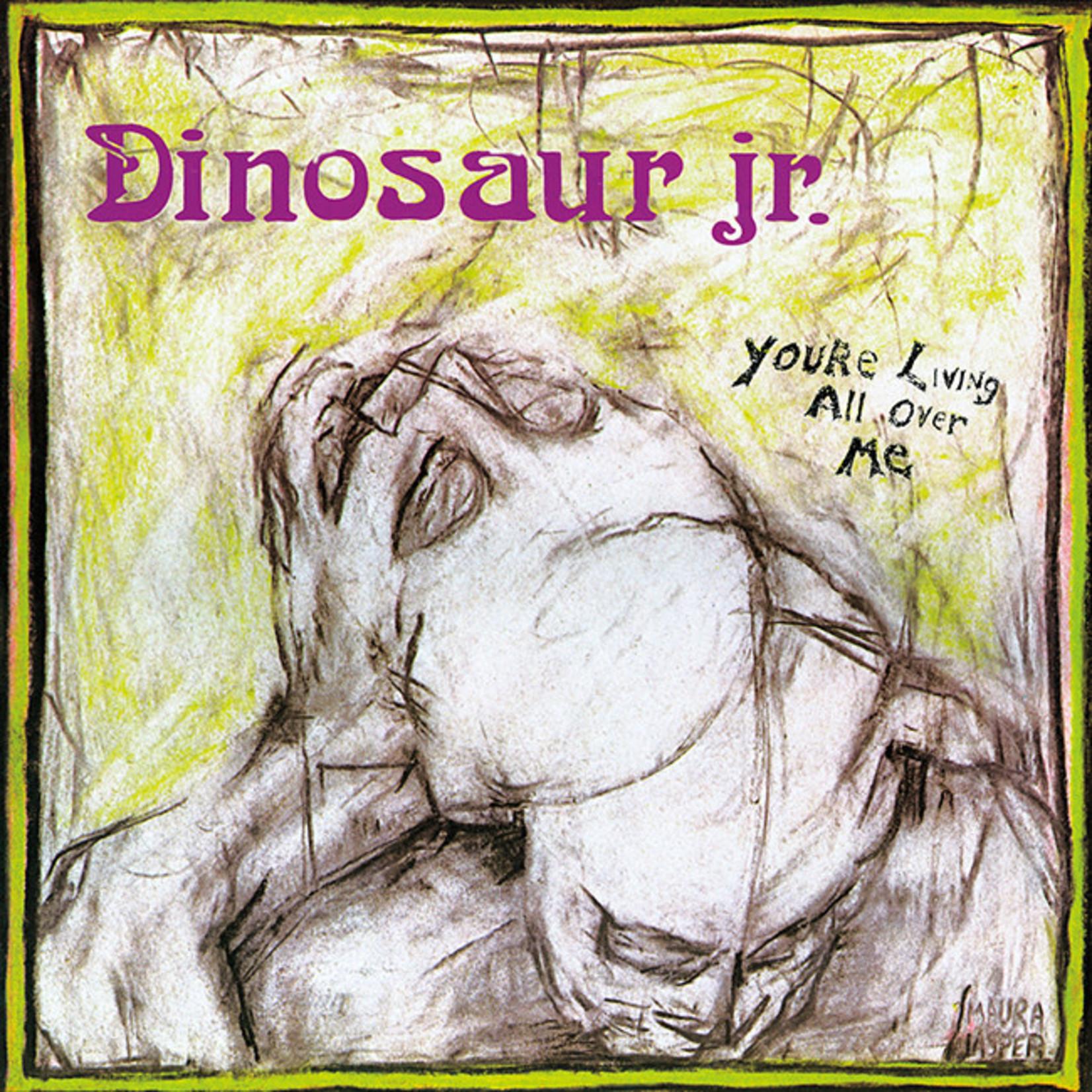 [New] Dinosaur Jr.: You're Living All Over Me