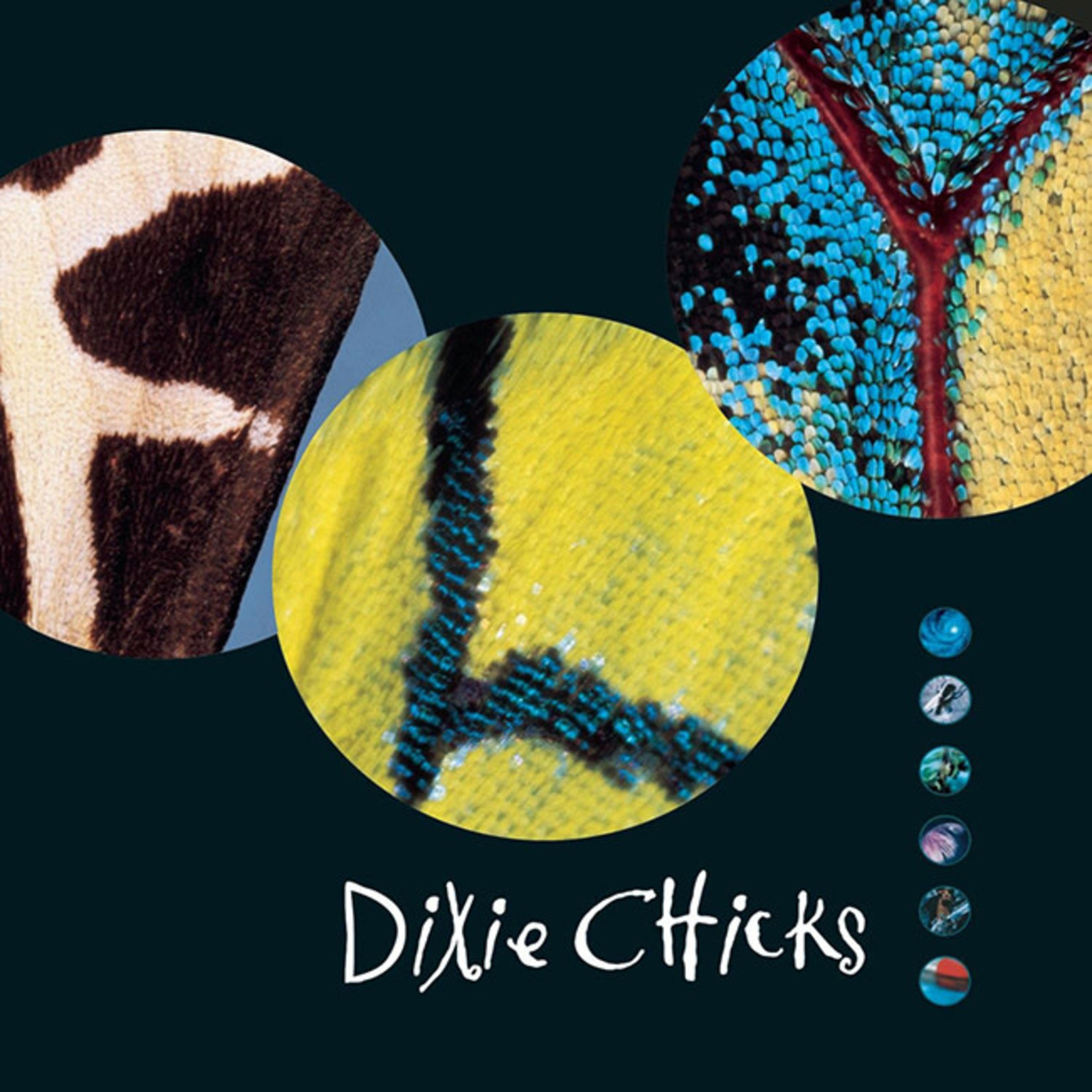 [New] Dixie Chicks: Fly