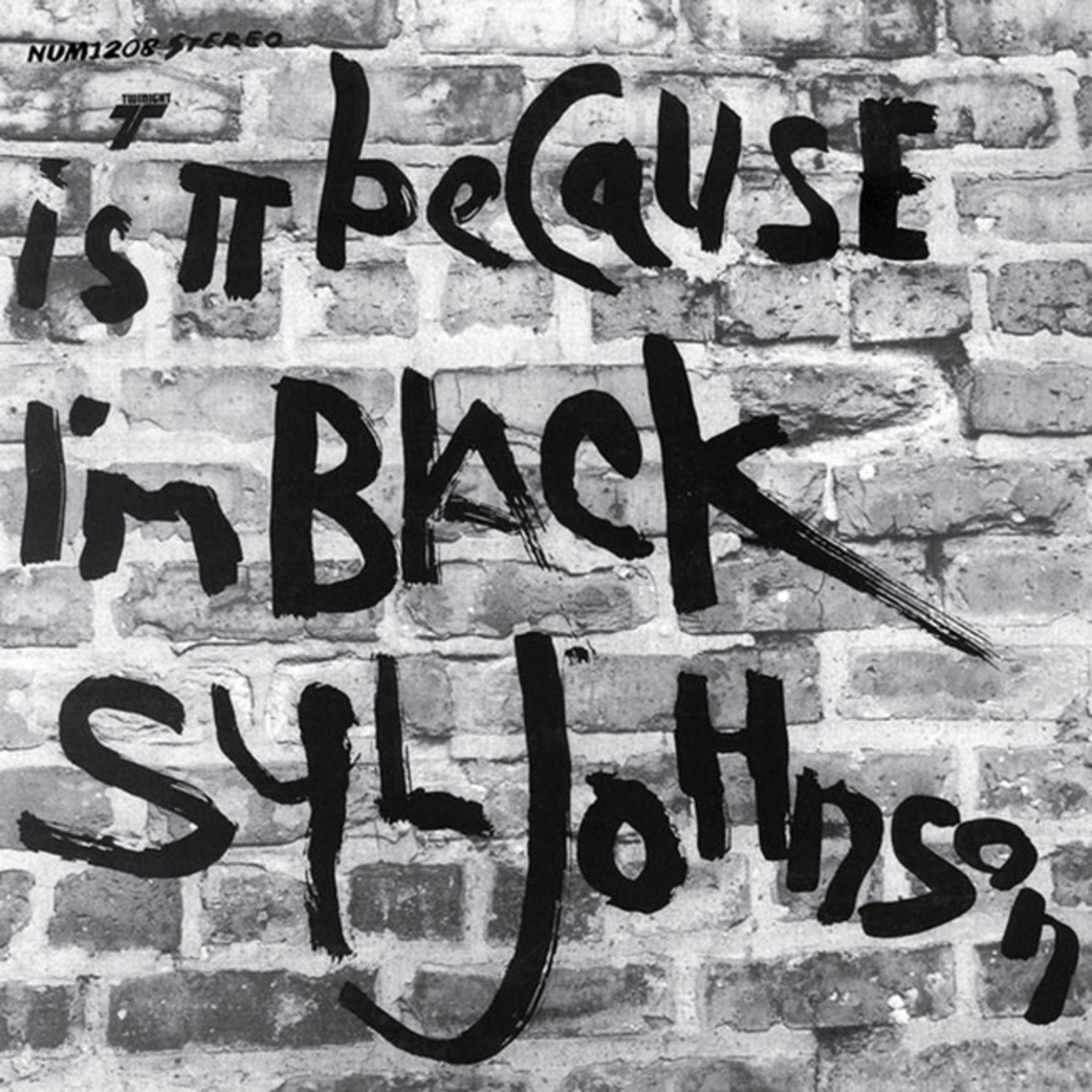 [New] Johnson, Syl: Is It Because I'm Black