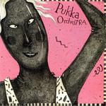 [Vintage] Pukka Orchestra: self-titled